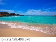 Купить «Cala Tarida in Ibiza beach San Jose at Balearic Islands», фото № 28498370, снято 10 июня 2013 г. (c) Ingram Publishing / Фотобанк Лори