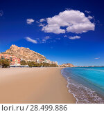 Купить «Alicante Postiguet beach and castle Santa Barbara in Spain Valencian Community», фото № 28499886, снято 21 января 2014 г. (c) Ingram Publishing / Фотобанк Лори