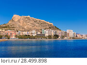 Купить «Alicante Postiguet beach and castle Santa Barbara in Spain Valencian Community», фото № 28499898, снято 21 января 2014 г. (c) Ingram Publishing / Фотобанк Лори