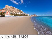 Купить «Alicante Postiguet beach and castle Santa Barbara in Spain Valencian Community», фото № 28499906, снято 21 января 2014 г. (c) Ingram Publishing / Фотобанк Лори