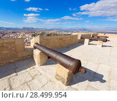 Купить «Alicante skyline and old canyons of Santa Barbara Castle in Spain», фото № 28499954, снято 21 января 2014 г. (c) Ingram Publishing / Фотобанк Лори