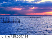 Купить «Albufera sunset lake park in Valencia el saler colorful sky of Spain», фото № 28500194, снято 15 ноября 2013 г. (c) Ingram Publishing / Фотобанк Лори
