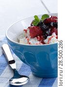 Купить «Cottage cheese in blue bowl with raspberries blueberries and mint», фото № 28500286, снято 24 апреля 2013 г. (c) Ingram Publishing / Фотобанк Лори
