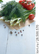 Купить «Fresh organic vegetable set of tomatoes dill and onion on white kitchen table», фото № 28500570, снято 18 июня 2019 г. (c) Ingram Publishing / Фотобанк Лори