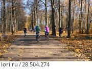 Купить «Осенний парк. Пара велосипедистов катается по дорожке. Город Москва, Битцевский лесопарк, район Ясенево», эксклюзивное фото № 28504274, снято 13 октября 2013 г. (c) Щеголева Ольга / Фотобанк Лори