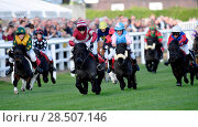 Купить «Pictured this afternoon - 17/10/16 Forget about the Grand National – the biggest horse-racing event on the calendar in Sussex starred junior jockeys racing...», фото № 28507146, снято 17 октября 2016 г. (c) age Fotostock / Фотобанк Лори