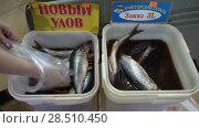 Купить «Женская рука выбирает соленую селедку на рыбном рынке», видеоролик № 28510450, снято 20 мая 2018 г. (c) А. А. Пирагис / Фотобанк Лори