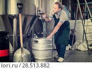 Купить «Portrait of brewer who is making beer and controls the process in the brew-house.», фото № 28513882, снято 18 сентября 2017 г. (c) Яков Филимонов / Фотобанк Лори