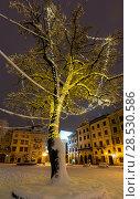 Купить «Night winter Rynok Square in Lviv city, Ukraine», фото № 28530586, снято 4 февраля 2018 г. (c) Юрий Брыкайло / Фотобанк Лори