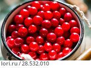 Купить «Cherries in white metal cans on a wooden table», фото № 28532010, снято 24 июля 2016 г. (c) Евгений Ткачёв / Фотобанк Лори