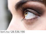 Купить «Close-up of woman eye with long eyelashes», фото № 28536190, снято 10 марта 2015 г. (c) Ingram Publishing / Фотобанк Лори