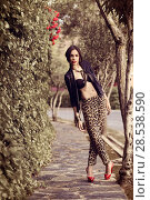 Купить «Portrait of young beautiful woman, model of fashion, wearing leopard pants, jacket and red high heels», фото № 28538590, снято 18 мая 2013 г. (c) Ingram Publishing / Фотобанк Лори