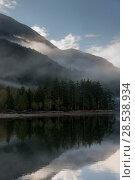 Купить «Reflection of trees in water, Furry Creek, British Columbia, Canada», фото № 28538934, снято 22 марта 2016 г. (c) Ingram Publishing / Фотобанк Лори