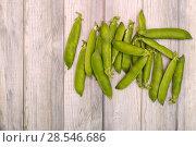 Купить «Стручки зелёного горошка на деревянном фоне», фото № 28546686, снято 4 июня 2018 г. (c) V.Ivantsov / Фотобанк Лори