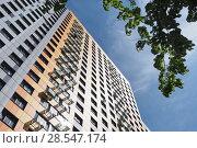 Купить «Фасад высотного многоквартирного дома с веткой дерева на фоне неба», фото № 28547174, снято 3 июня 2018 г. (c) Сайганов Александр / Фотобанк Лори