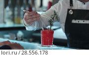 Купить «Bartender decorating cocktail red alcoholic cocktail with berries», видеоролик № 28556178, снято 13 мая 2017 г. (c) Vasily Alexandrovich Gronskiy / Фотобанк Лори