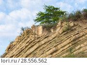 Остатки разрушенного здания на вершине скалы. Стоковое фото, фотограф Иванов Алексей / Фотобанк Лори
