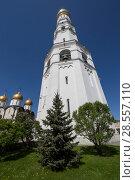 Купить «Inside of Moscow Kremlin, Russia (day). Ivan the Great Bell Tower (Kolokolnya Ivana Velikogo)», фото № 28557110, снято 11 мая 2018 г. (c) Владимир Журавлев / Фотобанк Лори