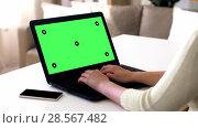 Купить «female hands typing on laptop with green screen», видеоролик № 28567482, снято 8 декабря 2019 г. (c) Syda Productions / Фотобанк Лори