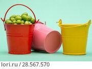 Купить «Натюрморт с вёдрами и зелёным горошком на зелёном фоне», фото № 28567570, снято 4 июня 2018 г. (c) V.Ivantsov / Фотобанк Лори