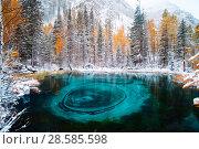 Купить «Fantastic blue geyser lake in the autumn forest. Altai, Russia.», фото № 28585598, снято 24 сентября 2017 г. (c) Евгений Глазунов / Фотобанк Лори