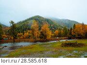 Купить «Mountains with colorful autumn forest at overcast. Beautiful landscape in autumn.», фото № 28585618, снято 24 сентября 2017 г. (c) Евгений Глазунов / Фотобанк Лори