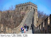 Купить «China, Beijing. Tourists climb to the tower on the Great Wall of China», фото № 28586126, снято 2 апреля 2017 г. (c) Яна Королёва / Фотобанк Лори