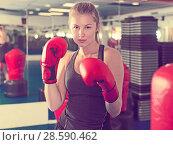 Купить «Woman boxing in gym», фото № 28590462, снято 21 августа 2017 г. (c) Яков Филимонов / Фотобанк Лори