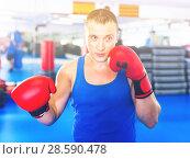 Купить «Man boxer is training in gloves in gym.», фото № 28590478, снято 21 августа 2017 г. (c) Яков Филимонов / Фотобанк Лори