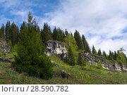 Купить «Landscape - low limestone rocks on a blooming glade in a mountain forest on a cloudy day», фото № 28590782, снято 10 июня 2018 г. (c) Евгений Харитонов / Фотобанк Лори