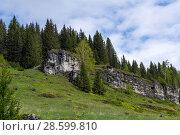 Купить «Landscape - low limestone rocks on a blooming glade in a mountain forest on a cloudy day», фото № 28599810, снято 10 июня 2018 г. (c) Евгений Харитонов / Фотобанк Лори
