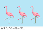 Купить «pink flamingo birds over blue background», фото № 28605994, снято 2 июля 2020 г. (c) Syda Productions / Фотобанк Лори