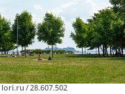 Купить «Парк 300-летия  Санкт-Петербурга», эксклюзивное фото № 28607502, снято 18 июня 2018 г. (c) Александр Щепин / Фотобанк Лори