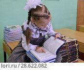 Купить «Девочка внимательно рассматривает новые учебники в классе, сидя на парте», эксклюзивное фото № 28622082, снято 24 августа 2012 г. (c) Илюхина Наталья / Фотобанк Лори