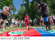 Купить «KAZAN, RUSSIA - JUNE 23, 2018: Traditional Tatar festival Sabantuy - Strong muscular men bow to each other before the battle outdoors», фото № 28630994, снято 23 июня 2018 г. (c) Константин Шишкин / Фотобанк Лори