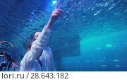 Teenage girl with Dad admire the marine life in the glass tunnel of the Aquarium in Dubai Mall stock footage video (2018 год). Редакционное видео, видеограф Юлия Машкова / Фотобанк Лори