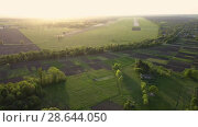 Купить «Aerial panoramic video in 4K from the drone, a bird's eye view of abstract geometric forms of abandoned runway, forests and agricultural fields in the summer evening at sunset», видеоролик № 28644050, снято 7 мая 2018 г. (c) Ярослав Данильченко / Фотобанк Лори
