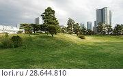 Купить «pine trees at hamarikyu gardens park in tokyo», видеоролик № 28644810, снято 18 июня 2018 г. (c) Syda Productions / Фотобанк Лори