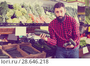 Купить «Ordinary male seller offering cucumbers in shop», фото № 28646218, снято 15 ноября 2016 г. (c) Яков Филимонов / Фотобанк Лори