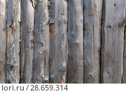 Купить «Background in style a rustic from old unpainted vertical boards with knots», фото № 28659314, снято 24 июня 2018 г. (c) Anatoly Timofeev / Фотобанк Лори