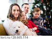 Купить «Family members spending Christmas time», фото № 28665114, снято 23 декабря 2016 г. (c) Яков Филимонов / Фотобанк Лори