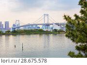 Купить «Токио. Япония.  Остров Одайба. Радужный мост.», фото № 28675578, снято 21 апреля 2017 г. (c) Галина Савина / Фотобанк Лори