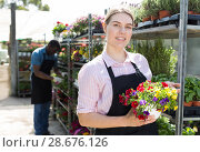 Купить «Florist girl working in greenhouse», фото № 28676126, снято 19 апреля 2018 г. (c) Яков Филимонов / Фотобанк Лори