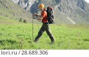 Купить «Hiking man walking on green mountain meadow with backpack. Summer sport and recreation concept.», видеоролик № 28689306, снято 17 апреля 2018 г. (c) Александр Маркин / Фотобанк Лори