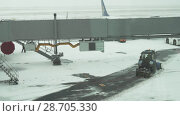 Tractor cleans road on snow-covered airfield of Astana International Airport stock footage video (2018 год). Редакционное видео, видеограф Юлия Машкова / Фотобанк Лори