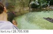 Купить «Children stand near a crocodile terrarium in Mosquarium», видеоролик № 28705938, снято 12 сентября 2017 г. (c) Ирина Мойсеева / Фотобанк Лори