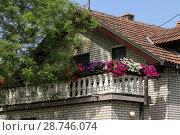 Купить «Украшение балконов цветами. Петуния», фото № 28746074, снято 30 апреля 2018 г. (c) ok_fotoday / Фотобанк Лори