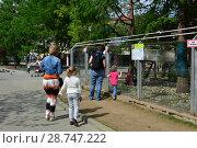 Купить «Посетители с детьми около вольера с животными в зоопарке. Пресненский район. Город Москва. Россия», эксклюзивное фото № 28747222, снято 13 мая 2015 г. (c) lana1501 / Фотобанк Лори