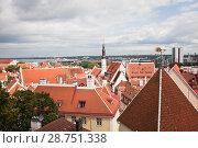 Купить «Вид на старый Таллин с церковью Святого Олафа (Олевисте)», фото № 28751338, снято 8 июля 2018 г. (c) Victoria Demidova / Фотобанк Лори