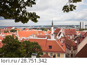 Вид на старый Таллин с черепичными крышами (2018 год). Стоковое фото, фотограф Victoria Demidova / Фотобанк Лори